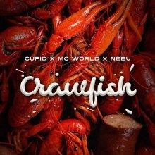 #17 Cupid x MC World x Nebu