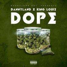 #9 Dannyland ft. King Louie