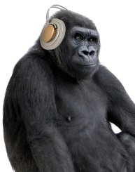 Dj King Kong Photo