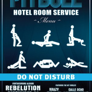 Pitbull Hotel Room Song Download