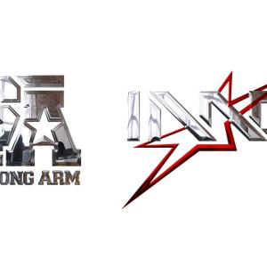 IMG/StrongArm Logo