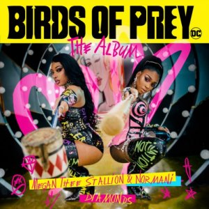 Birds Of Prey...The Album Cover