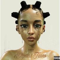Digital Tears Cover