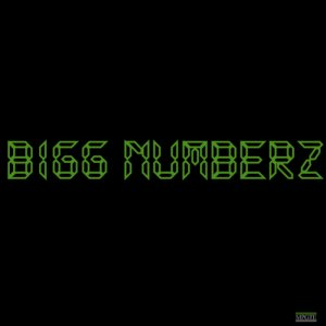 Bigg Numberz Cover