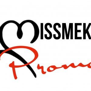Start 2 Finish Music Group Logo