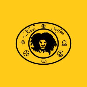 Black Surface, Inc Logo