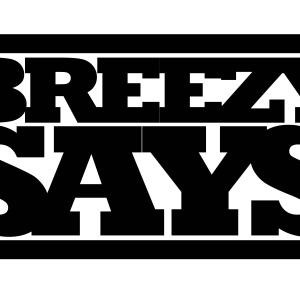 Breezy Says Marketing Group LLC Logo