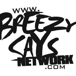 Breezy Says Marketing Group Logo