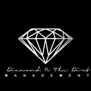 Diamond N the Dirt Logo