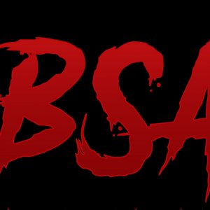 B.S.A Back Streets of America Logo