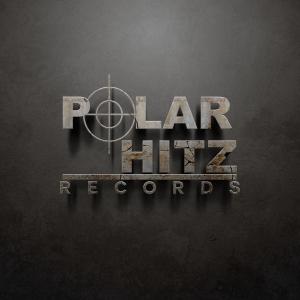 POLAR HITZ Logo