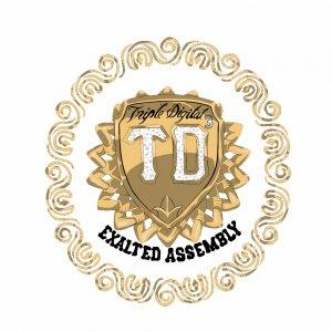 TripleDigital³ Logo